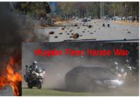 mugabe flees zimbabwe