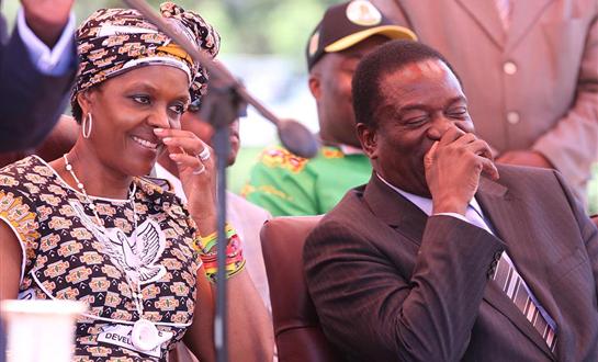 grace mugabe destroying zanu pf zimnews.net