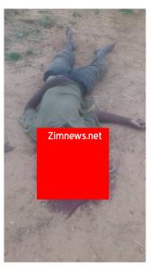gokwe north chireya murder